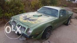 firebird for sale