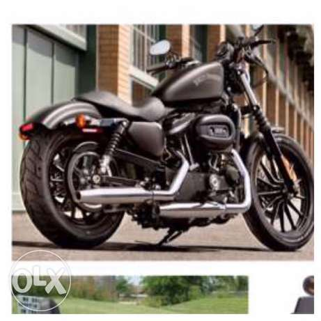Harley 883 xl Iron (2015)