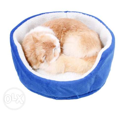 Cats and puppies bed