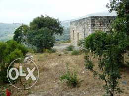 Old House + 2800sqm of land in a beautiful typical village in Jbeil