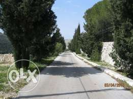 10800m2 for sale batroun ( daher abi yaghi )