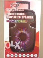 Professional Amplified Speaker