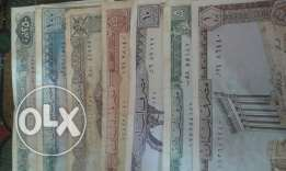Old money lebanese colection