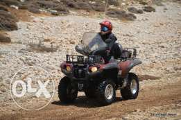 Atv - Yamaha Grizzly 700, 2009 Special Edition