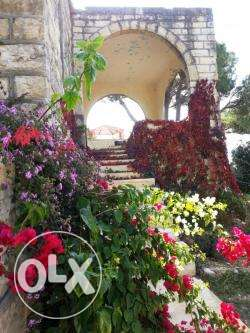 Ain Ksour - Alley Old Villa with 4000 SQM Land