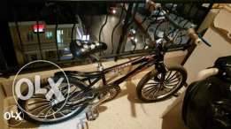 show bike for sale