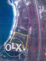 Land for Sale in Amchit( marked in red)