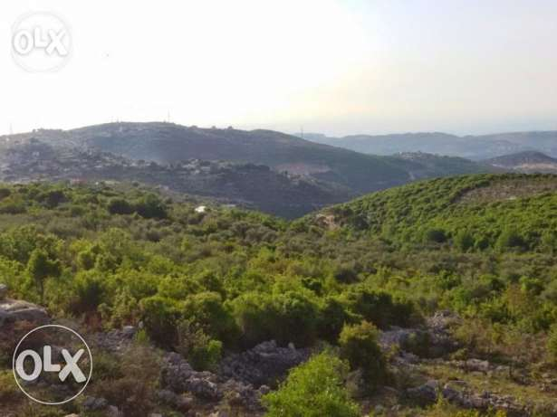 Land for sale in Assia- Batroun