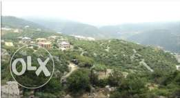 Special Lands for sale in Ajaltoun project