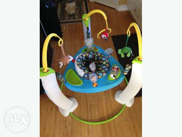 Evenflo exersaucer jump and learn, My First Pet