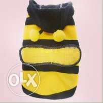 bee sweater for your furry friend