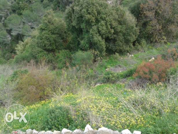 Land for sale in Bashamoun راس  بيروت -  2