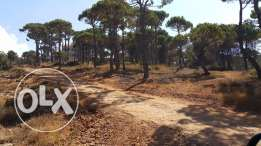 Land for sale BY OWNER in marj baskinta metn. 2ard lalbey3 doun wasit.