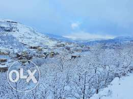 Chalets for rent _Faraya / day