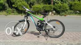 Bicycle Longwise electric.