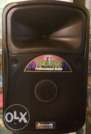 Professional audio battery speakers with disco led light