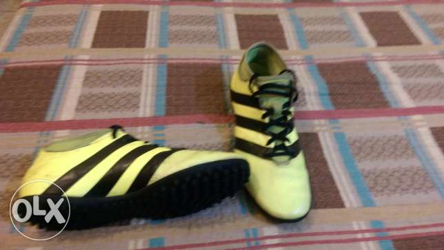 Adidas Football Shoes - ACE 16.3 Yellow PrimeMesh Turf الشياح -  4