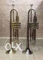 trumpet silver & gold