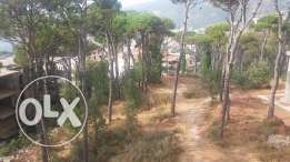 Land for sale in falougha (maten)