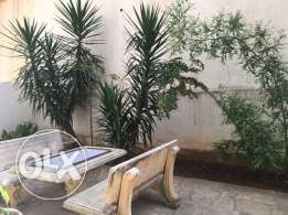 Cosy apartment in Tilal Ain Saadeh
