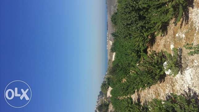 land for sale in zahrani