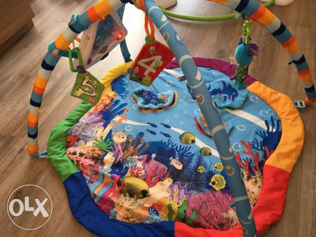 Playgym and mat (Baby Einstein)