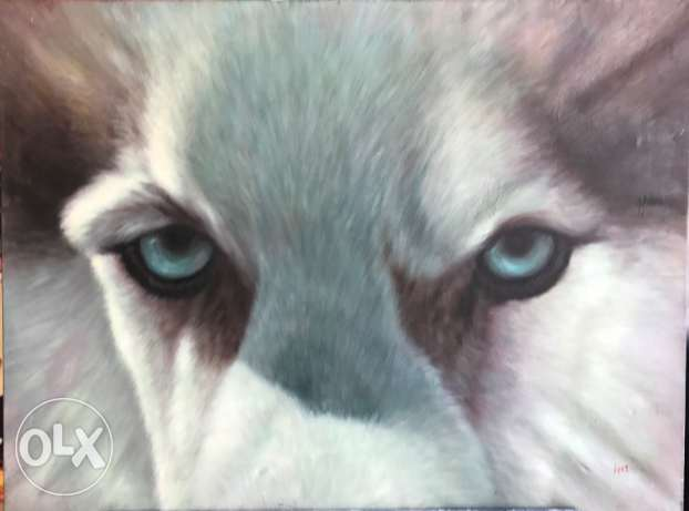Wolf Eyes Oil Painting For Sale At A Great Price.