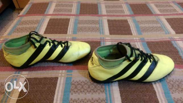 Adidas Football Shoes - ACE 16.3 Yellow PrimeMesh Turf الشياح -  1