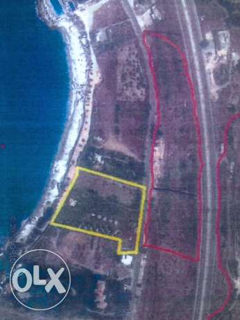 Land for Sale in Amchit( marked in red) كسروان -  1