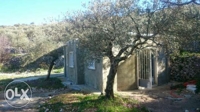 Land 1278m with small house 45m