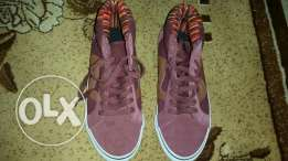Shoes bordo
