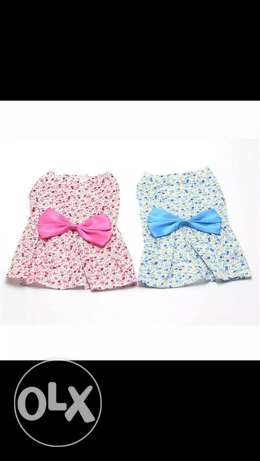 summer florale dress for dogs