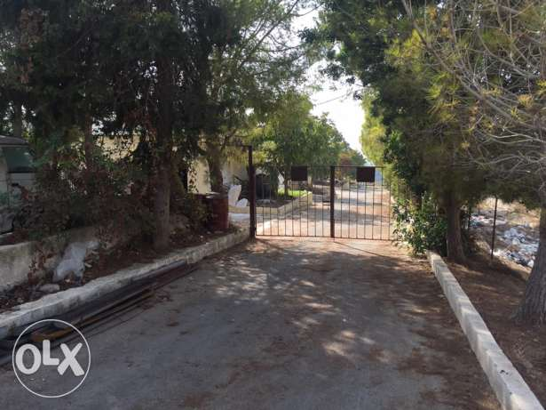 Land for Sale farm with sea view