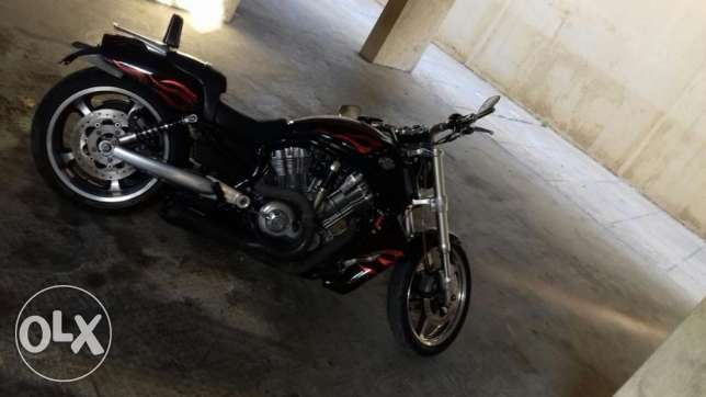 Harley davidson Vrod muscle 2009 new look. 1250cc.vance&hinse exhaust