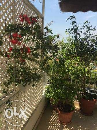 Jounieh 200m2 apartment - excellent condition - ideal location -
