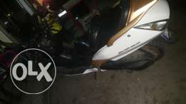silver wings 600  for sale