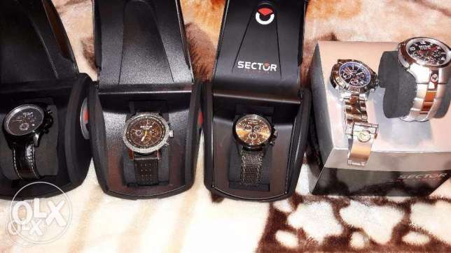 sector watches