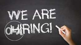 Looking for sales manager