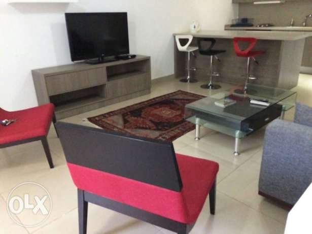 Beautiful Furnished One bedroom Achrafieh