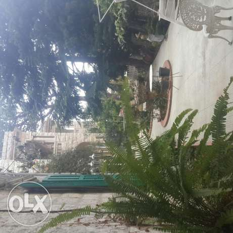 House ardy 4 rent in Aley big garden