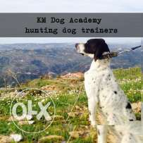 Hunting Dog Trainers