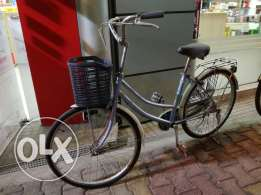 Vintage bicycle 24'