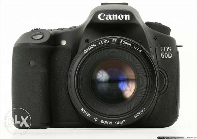 Canon 60D wiz 55 250 & 2 battery