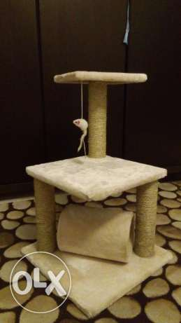Scratch boxes for Cats راس  بيروت -  1