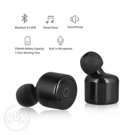dual earbuds