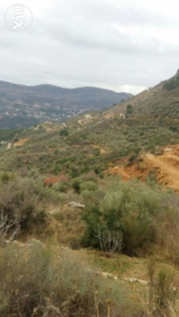 Land for sale in Remhala