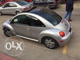 beetle for sale