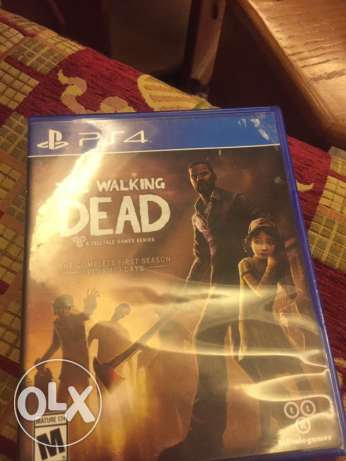 The Walking Dead for ps4 only