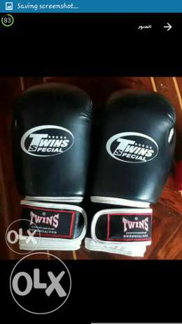 2 gloves for boxing (twins)