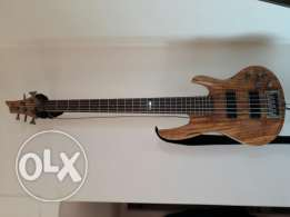 ESP-LTD Bass 5 strings with softcase